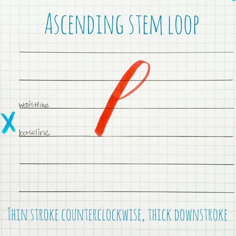basic strokes: ascending stem loop