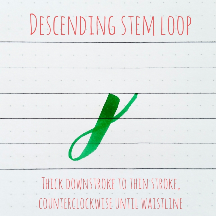 basic strokes: descending stem loop